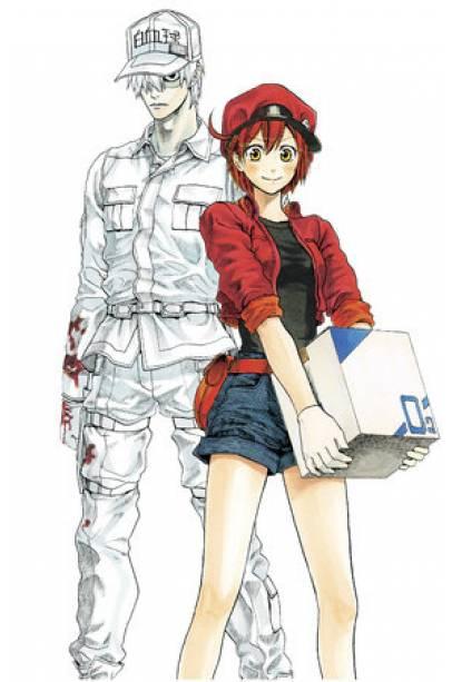 Cells at Work! Complete Manga Box Set!